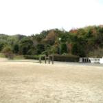 【無料キャンプ場】桜井海浜ふれあい広場(愛媛県)