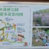 【無料キャンプ場】えひめ森林公園キャンプ場